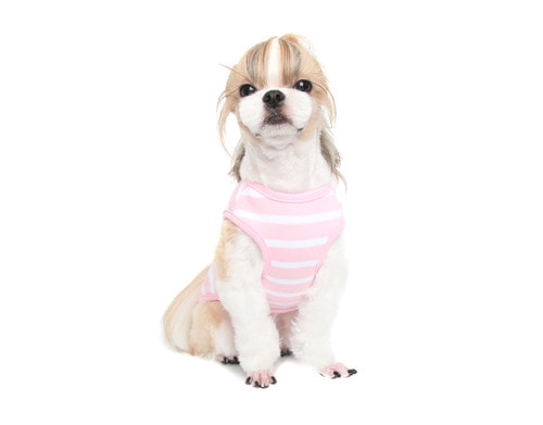 Stripe Sleeveless_Pink